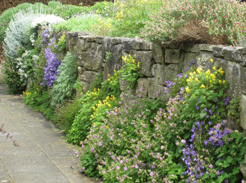 dekorisanje biljkama